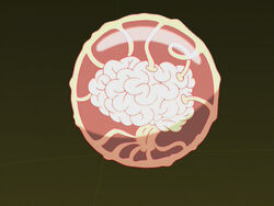 Brain Ball