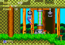 Mushroom Hill Screen