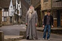 Dumbledore and Harry in Budleigh Babberton