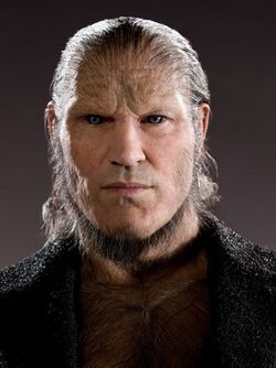 PromoHP6 Fenrir Greyback