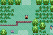 Ruby-Sapphire Route 101 1