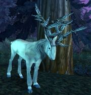 Moongraze Stag