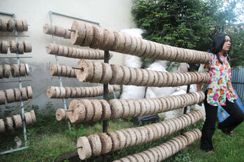 Biomass briquettes