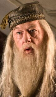 Albus Dumbledore babberton