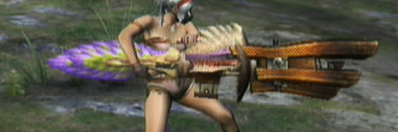 liste des armes de monster hunter tri Custom3Bowgun