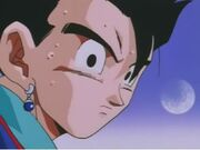 Gohan8