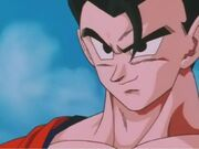 Gohan11