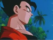 Gohan16