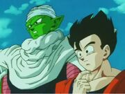 Gohan piccolo 4