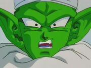 Piccolo2
