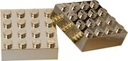 852745 Metallized Magnet Set