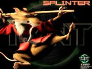 Master Splinter 6