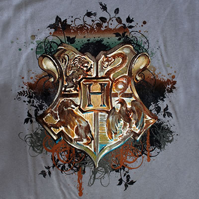 <img:http://images2.wikia.nocookie.net/__cb20091220170734/harrypotter/images/8/8a/Hogwarts_Crest_design_for_Gray_T-Shirt.jpg>