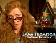 Emma Thompson (Professor Trelawney) HP5 screenshot