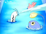 EP387 Barboach, Corsola y Chinchou de Galano