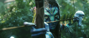 Neytiri Arrow