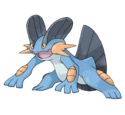 Swampert