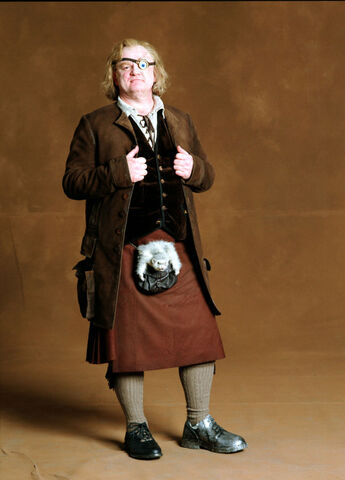 File:Brendan Gleeson as Mad-Eye Moody (GoF-promo-01).jpg
