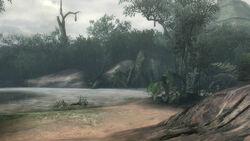 [3/3]Monster Hunter 3 Ultimate  250px-SunkenForest-Area4
