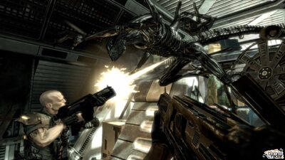 Aliens vs Predator - E3-Xbox 360Screenshots16874AVP E3 Online 7--screenshot