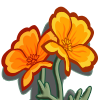 Golden Poppy-icon