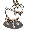 Saanens Goat-icon