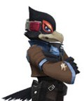 Black Falco