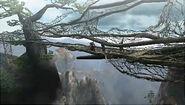 [3/3]Monster Hunter 3 Ultimate  185px-MountainStream05