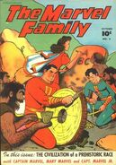Marvel Family 5