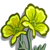 Yellow Poppies-icon