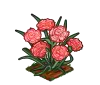 Perfect Pink Carnation-icon