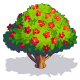 Flame Tree-icon.png