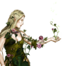 Elvish Druid