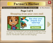 FMarket13