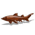 KoaWood Shark-icon
