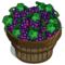 Grape Bushel-icon