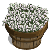 Lilies Bushel-icon