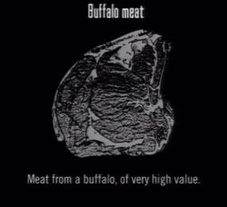 Animals Buffalo Meat