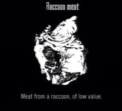 Animals Raccoon Meat