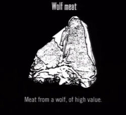 Animals Wolf Meat