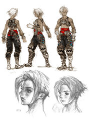 Vaan-concept