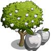 White Apple Tree-icon