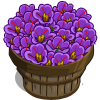 Saffron Bushel-icon