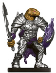 Dragonborn Paladin
