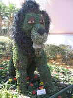 Scar-2010-disney-world-flower-and-garden-festival