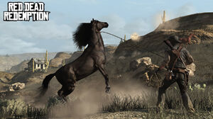 Rdr buckin awesome
