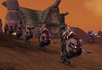 Ironforge Cavalryman