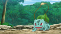 Ash Bulbasaur