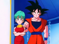 GokuBulmaFriendship