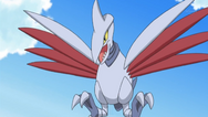 Barry Skarmory